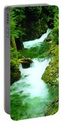 Double Falls  Portable Battery Charger