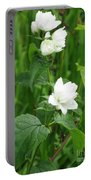 Double Jasmine In Bloom Portable Battery Charger