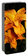 Double Orange Daylilies Portable Battery Charger