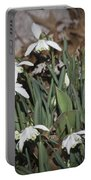 Double Snowdrops Squared Portable Battery Charger