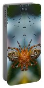 Double Spider Portable Battery Charger
