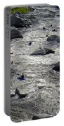 Down The Feather River Portable Battery Charger