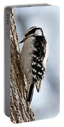 Downy Woodpecker 4 Portable Battery Charger