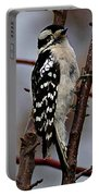 Downy Woodpecker 7 Portable Battery Charger