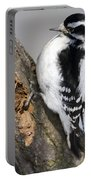 Downy Woodpecker Perched In A Tree Portable Battery Charger