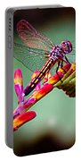 Dragon Fly Portable Battery Charger