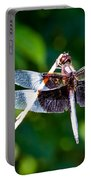 Dragonfly 0002 Portable Battery Charger