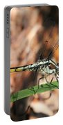 Dragonfly Closeup Portable Battery Charger