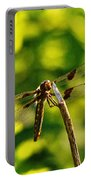 Dragonfly In Green Portable Battery Charger