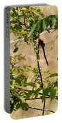 Dragonfly Lunch Portable Battery Charger