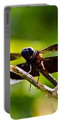Dragonfly Stalking Portable Battery Charger