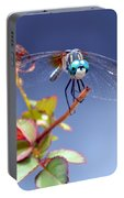 Dragonfly Visit Portable Battery Charger