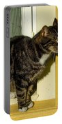Dreaming Cat Portable Battery Charger