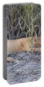 Dreaming Of Birds Portable Battery Charger