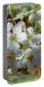 Dreams Of Pear Blossoms Portable Battery Charger