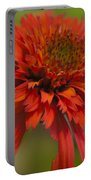 Dreamy Hot Papaya Coneflower Bloom Portable Battery Charger