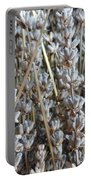 Dried Portable Battery Charger by Shannon Grissom