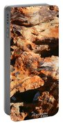 Driftwood 2 Portable Battery Charger