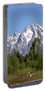 Driftwood And The Grand Tetons Portable Battery Charger