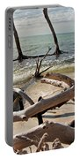 Driftwood Jungle I Portable Battery Charger
