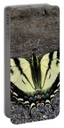 Driveway Butterfly Portable Battery Charger