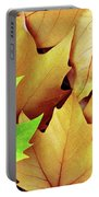 Dry Fall Leaves Portable Battery Charger by Carlos Caetano
