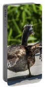 Duck And Run Portable Battery Charger
