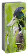 Duck In The Green Grass Portable Battery Charger