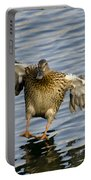 Duck Landing Portable Battery Charger