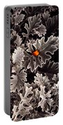 Dusty Miller  Portable Battery Charger