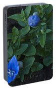 Dwarf Balloon Flower Platycodon Astra Blue 2 Portable Battery Charger