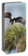 Eagle In The Palm Portable Battery Charger
