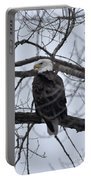Eagle In The Wild Portable Battery Charger