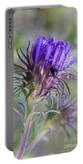 Early Knapweed Portable Battery Charger