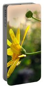 Early Morning Daisy Portable Battery Charger