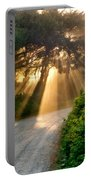 Early Morning Sunlight Portable Battery Charger