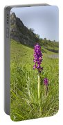 Early Purple Orchids Portable Battery Charger