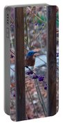 Eastern Bluebird Between The Bars Portable Battery Charger