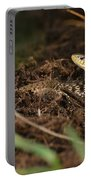 Eastern Garter Snake - Checkered Coloration Portable Battery Charger