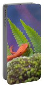 Eastern Newt 1 Portable Battery Charger