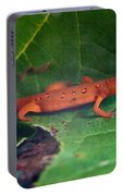 Eastern Newt Notophthalmus Viridescens 27 Portable Battery Charger