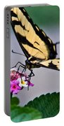 Eastern Tiger Swallowtail 5 Portable Battery Charger