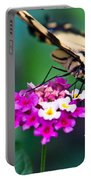 Eastern Tiger Swallowtail 8 Portable Battery Charger