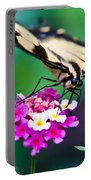 Eastern Tiger Swallowtail 9 Portable Battery Charger