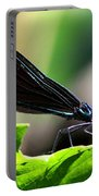 Ebony Jewelwing In The Spotlight Portable Battery Charger