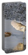 Egret Being Chased By Alligator Portable Battery Charger