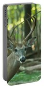Eight Point And Fawn_9532_4367 Portable Battery Charger