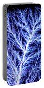 Electrical Discharge Lichtenberg Figure Portable Battery Charger