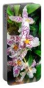 Elegant Beallara Orchid Portable Battery Charger