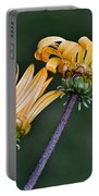 Elegant Daisies Portable Battery Charger